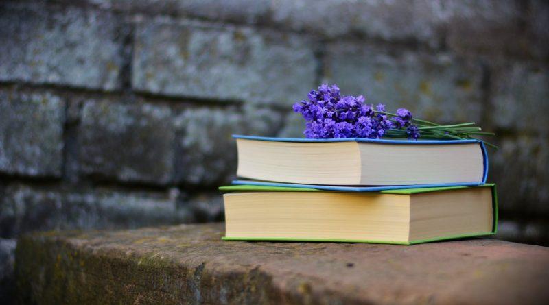 Subiektywna lista książek na wakacje